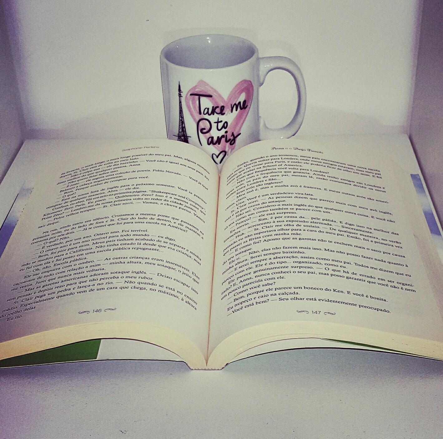 2 livro Anna e o beijo francês