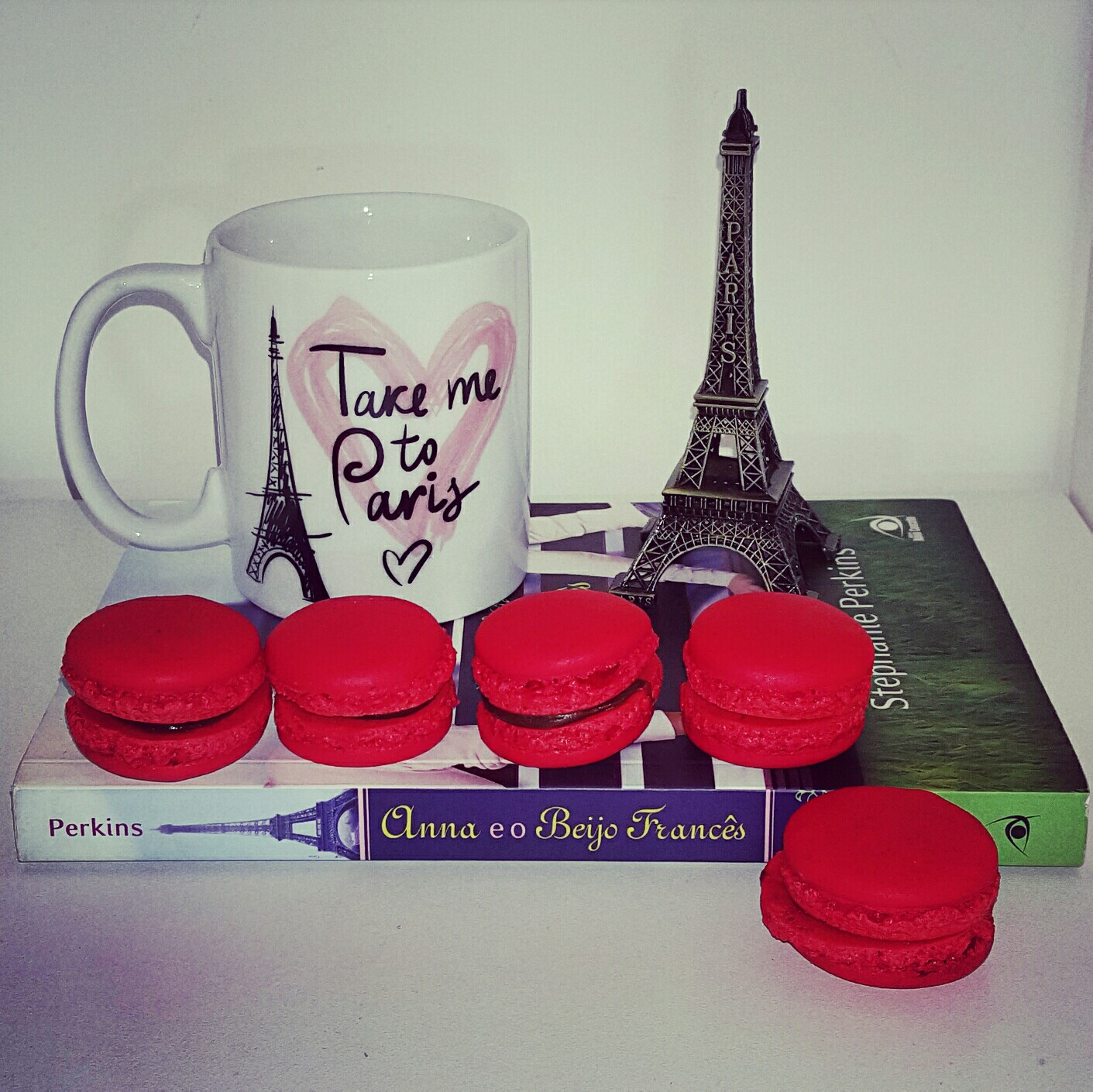 livro Anna e o beijo francês