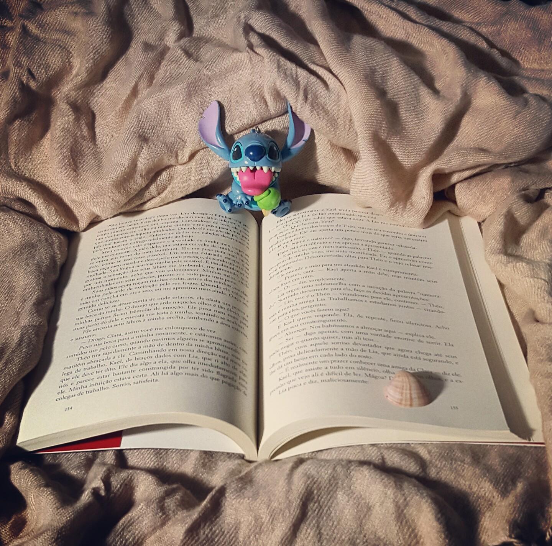Destinos Entrelaçados livro