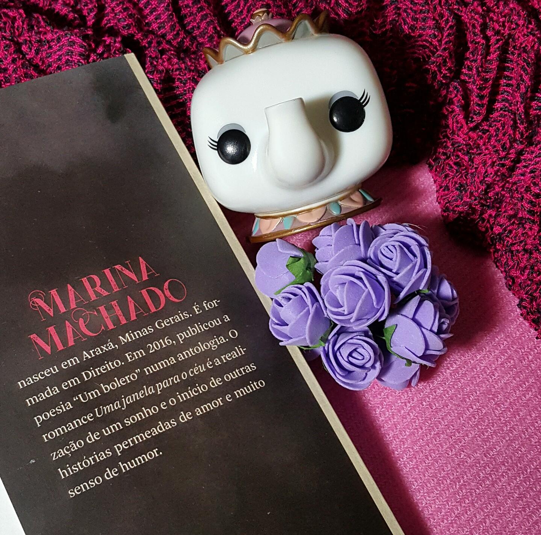 Livro Uma janela para o céu de Marina Machado