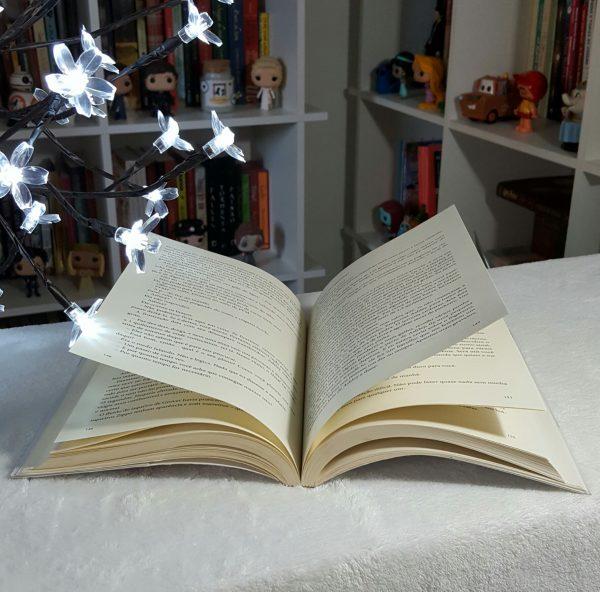 Livro depois daquela montanha